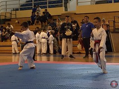 stefanou_15_5_2016_knockdown_109