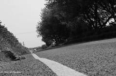 The grey mile, the B1242 road between Hornsea and Aldbrough. (MAMF photography.) Tags: road uk greatbritain summer england blackandwhite bw monochrome blackwhite google nikon flickr noir traffic noiretblanc unitedkingdom britain negro north gb upnorth pretoebranco schwarz biancoenero eastcoast eastyorkshire greatphoto googleimages northernengland enblancoynegro mamf inbiancoenero aldbrough schwarzundweis nikond7100 mamfphotography