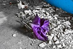 Abandono (KARNATION) Tags: alt paraguas roto abandono deca dejadez karnation