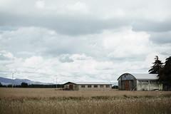 Father & son (Davide Bon) Tags: summer abandoned field 35mm nikon pastel country calm forsaken 35mm18 vsco nikond7100 vscofilm