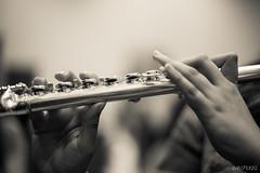 La flte traversire (LACPIXEL) Tags: music monochrome hands nikon flickr indoor manos flute musica nikkor fx mains cham musique intrieur crme flte flauta d4s nikonfrance lacpixel