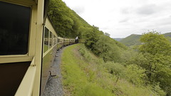Vale Of Rheidol Railway 26th May 2016 (boddle (Steve Hart)) Tags: life road flowers autumn winter wild summer england flower macro bird nature birds canon butterfly insect lens prime is spring seasons angle natural britain spiders wildlife bruce united steve great wide moth may butterflies railway insects wideangle 100mm creepy vale ii fungus moths l hart steven usm coventry standard 100400mm fisheyes 26th crawley 6d wilds 2016 wyke fungii kingdon 1635mm rheidol 24105mm wyken of boddle 815mm