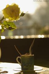 Vigorous items (Natali Antonovich) Tags: cup coffee rose belgium belgique belgie coffeecup parallels cosiness laresandpenates vigorousitems