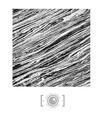 Abstract Schist (Dervish Images) Tags: newzealand blackandwhite bw abstract monochrome square mono squareformat geology franzjosephglacier schist dervishimages russdixon