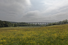 Crimple valley Viaduct (rockindave1) Tags: arches northyorkshire gradeiilisted canoneos5dmark2 adobecs5 crimpleviaduct harrogatelane