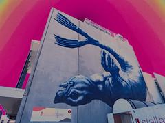 ROA's Seal (Steve Taylor (Photography)) Tags: blue newzealand sky baby streetart building art animal yellow wall digital graffiti mural sad purple upsidedown nelson eerie seal nz mauve southisland flippers semicircle roa stallardlaw
