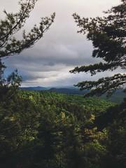 Summit. (thatnaturekidd) Tags: trees mountains forest woods view peak adventure explore summit wilderness pinetrees adirondack boltonlanding