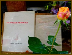 Flowershop (Kay Harpa) Tags: paris france book shopwindow poems livre baudelaire lesfleursdumal thebiggestgroup lesparadisartificiels photokay juin2016