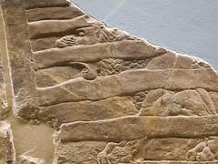 DSCN3033 (Nemoleon) Tags: june lions britishmuseum assyrian 2016 reliefsculpture