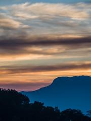 Sunset over the Nilgiris (Mike Prince) Tags: sunset india dusk hills tamilnadu nilgiris natureandenvironment mangorange carolynestate