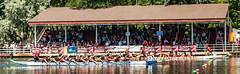 1st place (Paul Henman) Tags: toronto ontario canada photowalk torontoislands 2016 torontointernationaldragonboatracefestival topw paulhenman torontophotowalks httppaulhenmanphotographycom topwdbrf16