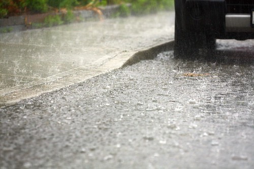 heavy rain today, a river down the gutter, my barrels overflowing!