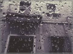 Palencia under the rain (sergio.pereira.gonzalez) Tags: espaa white black blanco rain lluvia spain noir y negro pluie et espagne blanc palencia sergiopereiragonzalez