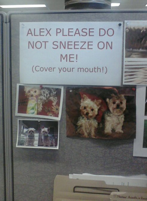 (ALEX PLEASE DO NOT SNEEZE ON ME!) (COVER YOUR MOUTH!)