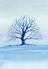 albero 38