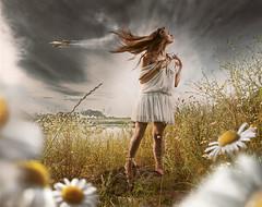 Whoopsie Daisy (Csheemoney) Tags: serbia aeroplane calm fairy daisy dreamy belgrade jetplane saturnine nemanjapesic