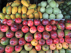 Fresh Fruit (Colorado Sands) Tags: food frutas fruit costarica papaya fruta crop mango frukt fruitstand melon cr centralamerica mangos puravida mangue obst orotina centroamerica centralamerican costarican sandraleidholdt leidholdt sandyleidholdt