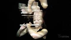 Underwater Modelling with Yu Diving (Yu Diving) Tags: school underwater scuba diving scubadiving modelling underwaterphotography ukdiving learntodive underwatermodelling yudiving knutsfordleisurecentre