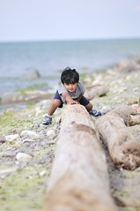 PUSH (krazyvshank) Tags: usa baby lake canada beach kids bokeh fort niagara falls infants f28 1755 d300