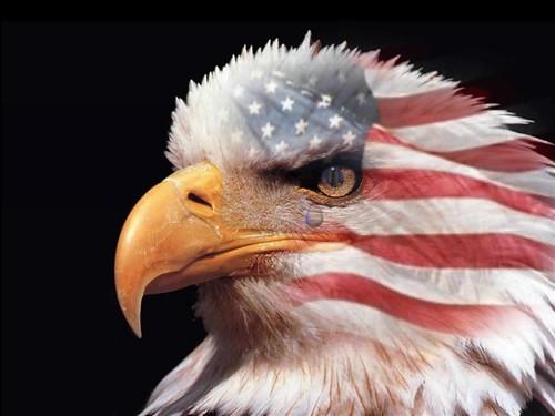USA, USA, USA !