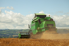 Cutting oats (patrickmonahan) Tags: world blue ireland summer sky cloud colour nature weather clouds rural landscape photography countryside shot vibrant wildlife farming perspective scenic national farmer geographic 2012 carlow