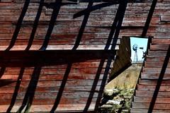 Feature Wall (Paul Hollins) Tags: australia newsouthwales aus gunnedah