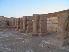 Ramesses II Temple at Abydos, Osiride columns (dr.heatherleemccarthy) Tags: morning sculpture statue temple egypt column ramesses abydos