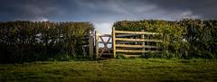 HFF (Matthew Johnson1) Tags: light sunset england sky fence evening gate natural naturallight hedge gateway goldenhour sunsetting rambling publicfootpath hff