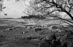 2016-April-23th_Porkkala_Yashica-Electro_005 (Tatu Korhonen) Tags: finland kirkkonummi porkkala yashicaelectro35professional yashinondx1745mm
