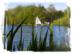Ein Mensch ohne Trume ist wie ein Boot ohne Segel. (mabumarion) Tags: lake blur texture reed nature water boat morninglight early spring dof outdoor perspective lakeside canvas frame sail sailor dewittsee