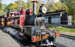 Puffing Billy Trip Melbourne VIC 02 May 2016 (20) (BaggieWeave) Tags: australia melbourne victoria steam vic steamengine steamtrain narrowgauge belgrave steamlocomotive puffingbilly