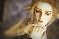 Day of the Faun (zoziebrown) Tags: cute amber elf bjd freckles abjd faun elven balljointeddoll whiteskin resindoll soomamber soomhybrid soomamberboy soomambermale soomfantasy