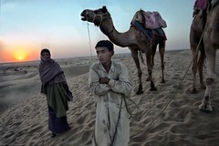 INDIA2149 (a PSYCHIATRIST'S view) Tags: india sunrise desert photojournalism camels thar samm