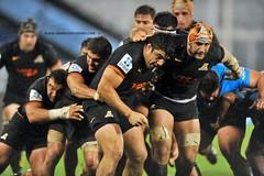 Rasguo de Jaguar (DanielSalvatori) Tags: jaguaresarg superrugby bulls icbc jaguares rugby sports uar ciudadautonomadebuenosaires provinciadebuenosaires argentina arg