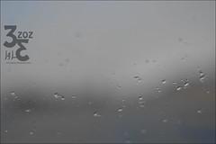 36 (3zoz_1) Tags: rain drops riyadh alone1    3zoz