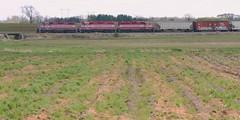 Late Start (Wide Cab) Tags: plant field farm crops wsor wisconsinsouthern oshkoshwi l595 oshkoshsub oshkoshjob