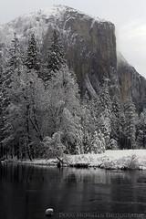 Snowy El Capitan and the Merced River (mcmillend) Tags: california snow yosemitenationalpark elcapitan mercedriver march2012
