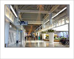 (240/365) (Alfred Life) Tags: leica 35mm airport taiwan m summicron 365  asph m9  f20 kaohsiunginternationalairport 6bit m352   leicam9 m9p leicam9p m352f20