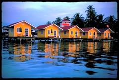 Isla Carenero - El Faro del Colibri - yellow hotel - Bocas del Toro, Panama (jcnikon) Tags: blue red color beach water coffee yellow island hotel boat canal nikon sigma palmtree boquete panama bocasdeltoro redfrogbeach 1020mm 1020 18200 panamacity vr panamacanal cascoviejo caribbeansea bastimentos 18200mm f3556 sigma1020 d80 redfrog chiriqu islacolon nikond80 redpoisondartfrog islacarenero bocastown panamabeer f456exdchsm colonisland elfarodelcolibri rainforesthikingtrails villasresort puntalavabeachbar f3556gedifafsvrdx