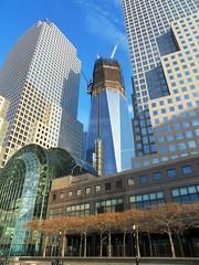 New York(278)