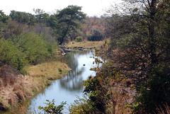 Victoria Falls_2012 05 24_1631 (HBarrison) Tags: africa hbarrison harveybarrison tauck victoriafalls zimbabwe zambeziriver mosioatunya