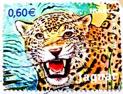 stamp France postage 60c € 0.60 Jaguar francobolli Briefmarken Frankreich porto timbres Republique Francaise フランス 切手 ジャガー selos sello France bollo francobolli Francia giaguaro marka mapka 美洲豹  一张邮票 法国 stamp France 60c postage postes timbre Francaise selo (stampolina, thx for sending stamps! :)) Tags: france cat postes french poste frankreich mail stamps cent frança stamp jaguar timbre francia tem 60 postage postzegel selo bolli sello sellos kirim fransa briefmarken 法国 pulu frimärken briefmarke 邮票 francobollo selos timbres frimærker марки francobolli bollo 切手 zegels pullar timbresposte franciaország 우표 republiquefrancaise zegel رسوم znaczki markica البريد スタンプ ongkos франция فرنسا perancis perangko frimerker pulları марка timbru طوابع แสตมป์ pullari γραμματόσημα postapulu yóupiào маркица bélyegek postaücreti почтовая टिकटों antspaudai razítka fǎguó postaköltség