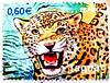 great stamp France postage 60c € 0.60 Jaguar francobolli Briefmarken Frankreich porto timbres Republique Francaise フランス 切手 ジャガー selos sello France bollo francobolli Francia giaguaro marka mapka 美洲豹  一张邮票 法国 stamp France 60c postage postes timbre Francaise (stampolina, thx for sending stamps! :)) Tags: france cat postes french poste frankreich mail stamps cent frança stamp jaguar timbre francia tem 60 postage postzegel selo bolli sello sellos kirim fransa briefmarken 法国 pulu frimärken briefmarke 邮票 francobollo selos timbres frimærker марки francobolli bollo 切手 zegels pullar timbresposte franciaország 우표 republiquefrancaise zegel رسوم znaczki markica البريد スタンプ ongkos франция فرنسا perancis perangko frimerker pulları марка timbru طوابع แสตมป์ pullari γραμματόσημα postapulu yóupiào маркица bélyegek postaücreti почтовая टिकटों antspaudai razítka fǎguó postaköltség