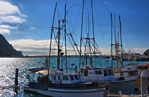 Fishing Fleet Morro Bay