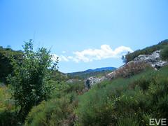 Lozère (Marie_Eve_) Tags: voyage eve france french pierres moutains monts aveyron lozere lozère