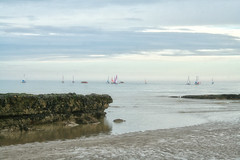 Out sailing (larigan.) Tags: sea seaweed evening sand rocks sailing horizon tranquility recreation lowtide sailboats englishchannel pastime lamanche bexhillonsea larigan phamilton gettyimageswants gettywants capturingenglishsummer