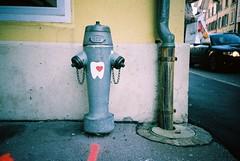 Tooth love (dreifachzucker) Tags: streetart film analog schweiz switzerland lomo lca xpro crossprocessed sticker suisse aarau slidefilm analogue 2011 lomographylca fujiprovia400x autaut fujirxp