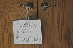 IMG_6711 (Cindee Snider Re) Tags: signs work fun donotdisturb geniusatwork highcallingfocus