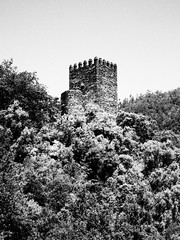 trees and castle (ccgd) Tags: vacation holiday portugal ruth calum sapin 2012 iberia ccgd