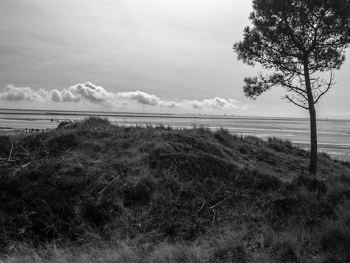 Waddenzee from Terschelling